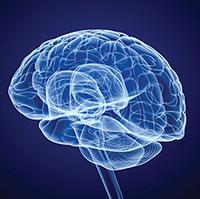 122957-RE-MATCH-brain-graphic